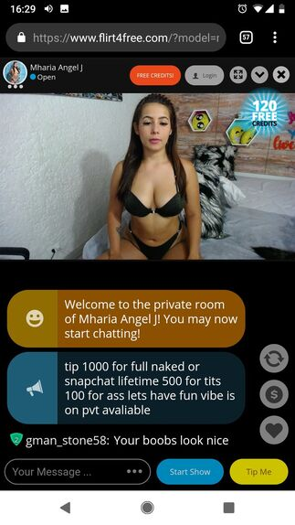 Flirt4Free vertical view of chat room on mobile